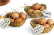 Eggs, Baskets, and Diversification