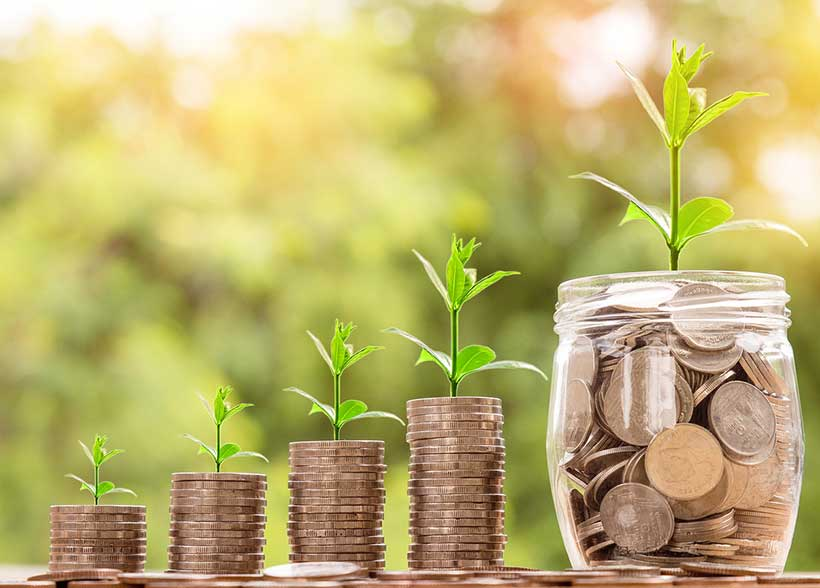 Grow with Dividend Stocks for Summer